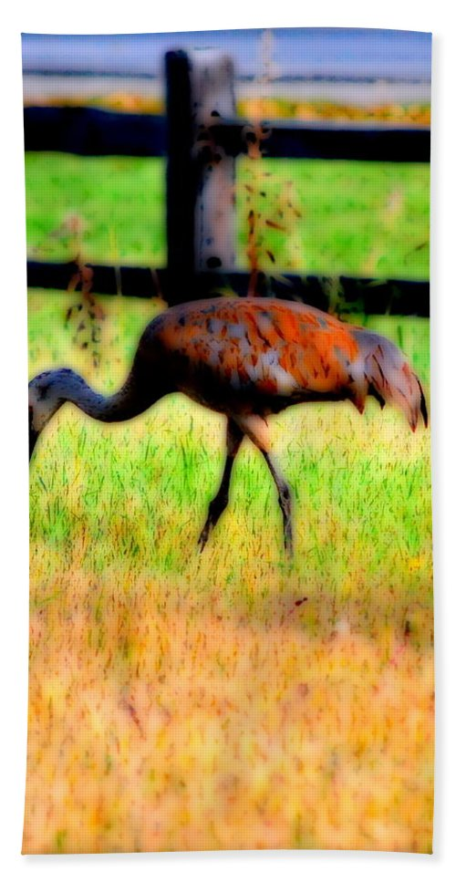 Migratory Hand Towel featuring the photograph Sandhill Crane IIi by Kathy Sampson
