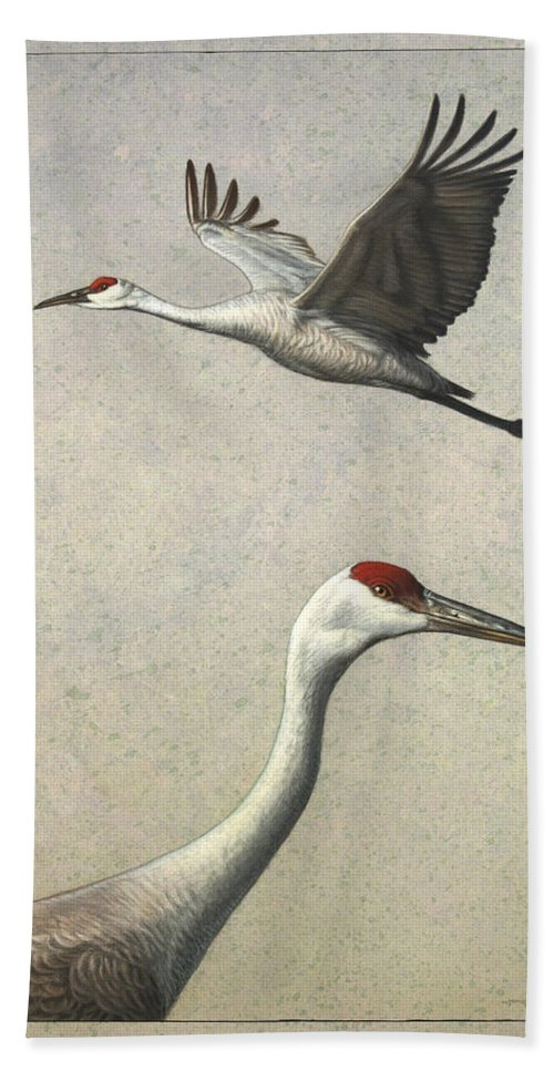 Crane Bath Sheet featuring the painting Sandhill Cranes by James W Johnson