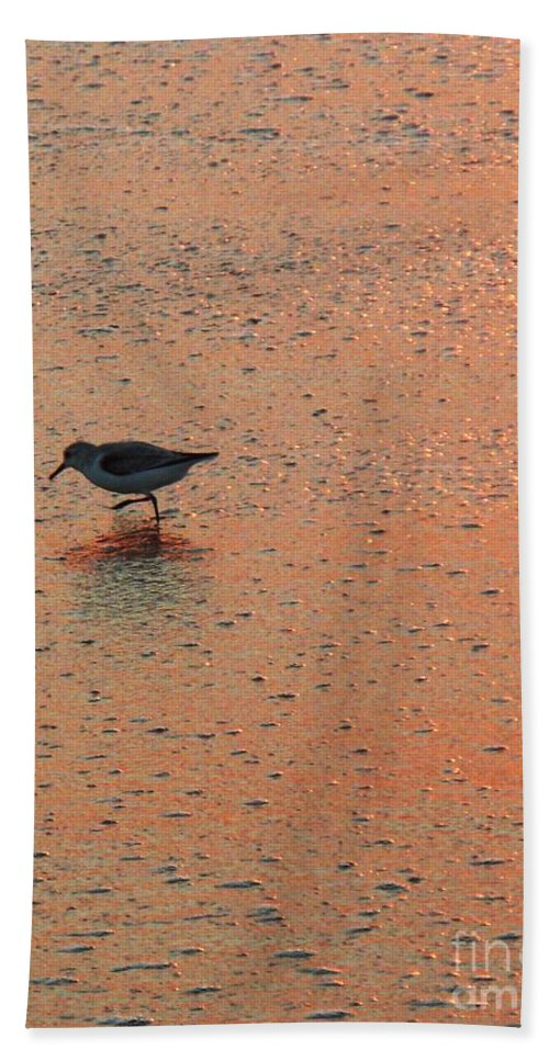 Beach Hand Towel featuring the photograph Sandpiper On Shoreline by Eric Schiabor