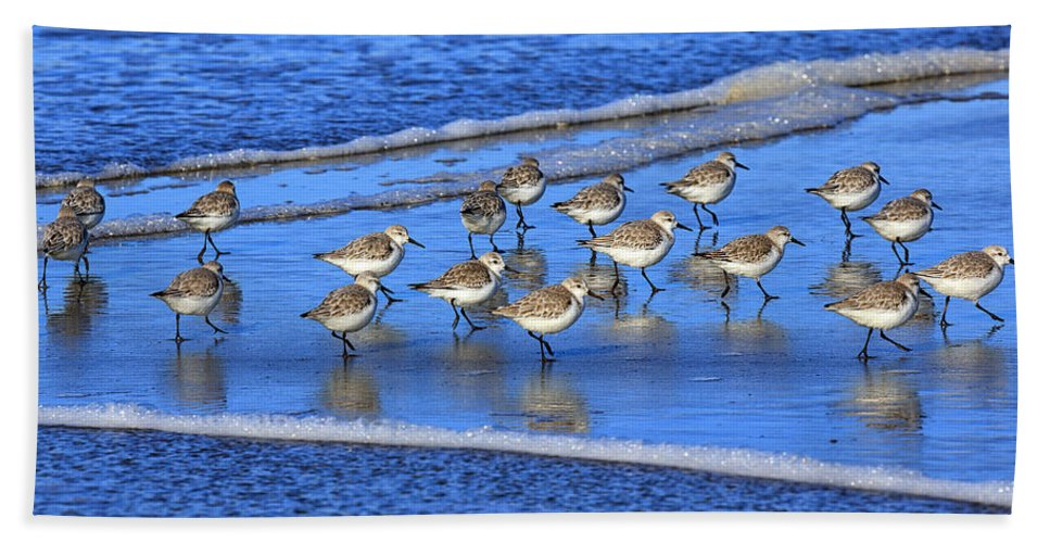 Beach Hand Towel featuring the photograph Sandpiper Symmetry by Robert Bynum