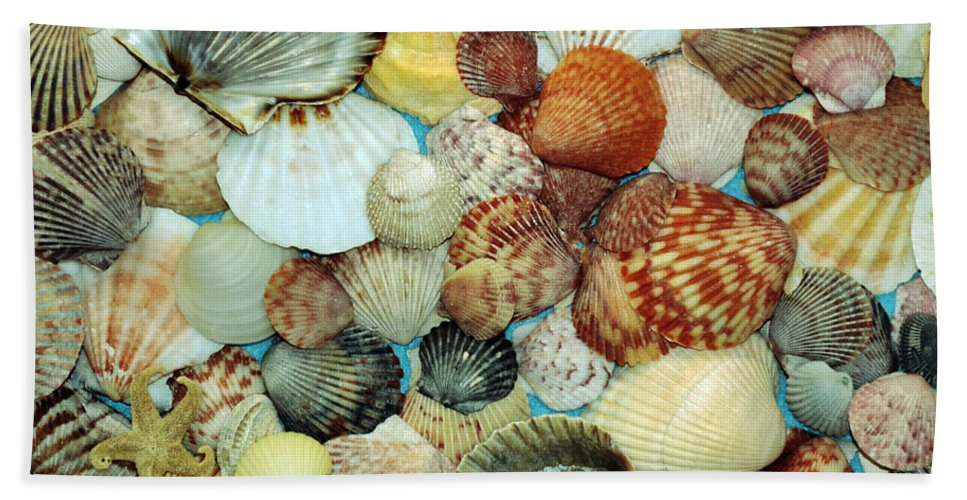 Scallops Bath Sheet featuring the photograph Scallop Shells by Kevin Fortier