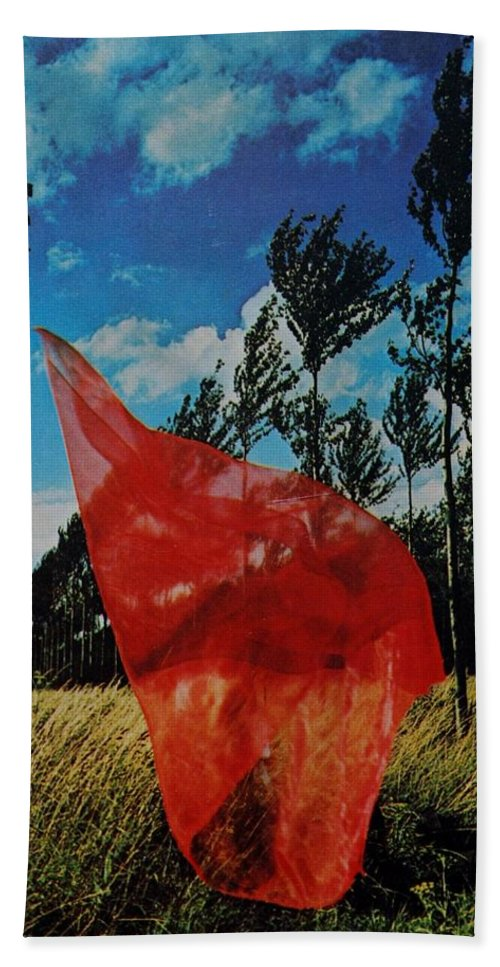 Scarf Hand Towel featuring the photograph SCARF in the WINDS by Rob Hans
