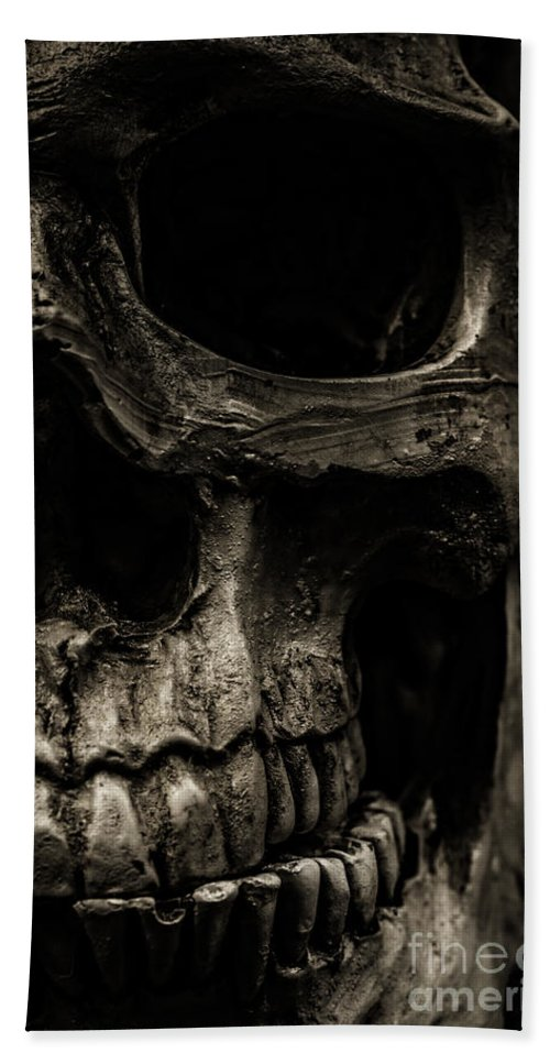 Still Life Bath Towel featuring the photograph Scary Skull by Edward Fielding