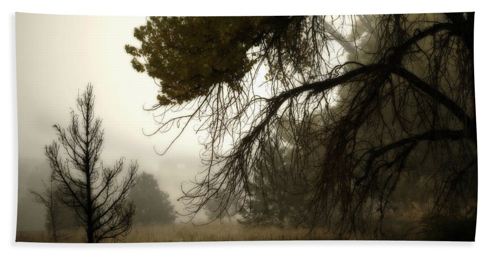 Fog Bath Sheet featuring the photograph Scary Trees by Marilyn Hunt