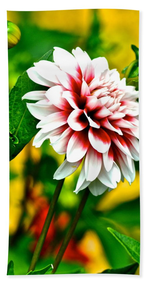 Bouquet Hand Towel featuring the photograph Scenic Bouquet by Frozen in Time Fine Art Photography