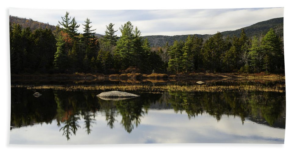 Autumn Hand Towel featuring the photograph Scenic Lily Pond by Luke Moore