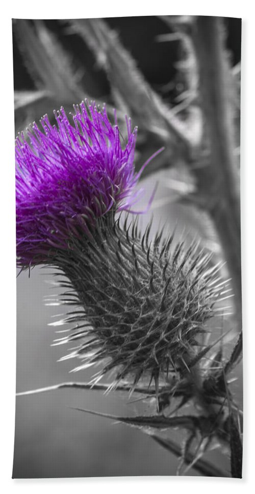 Thistle Hand Towel featuring the photograph Scotland Calls 2 by Scott Campbell