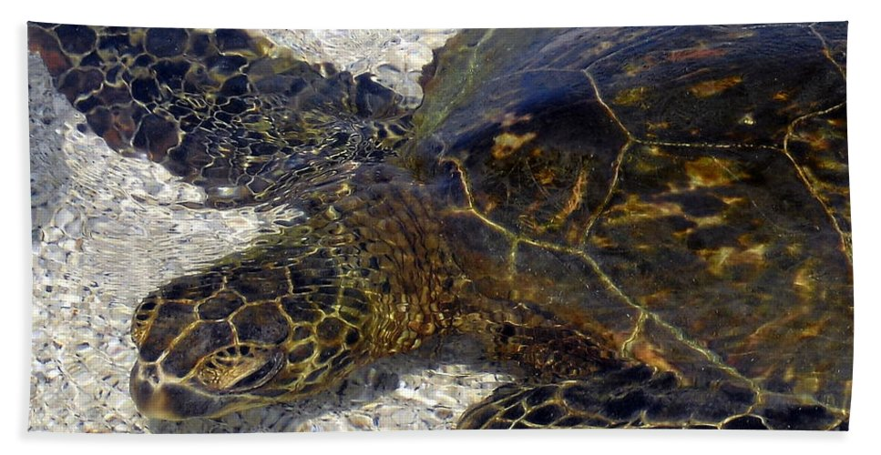 Turtle Bath Towel featuring the photograph Sea Life by Athala Bruckner