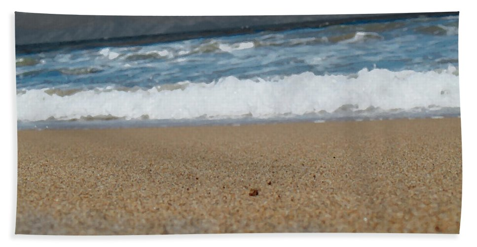 Photography Hand Towel featuring the photograph Sea Life by Marcello Cicchini