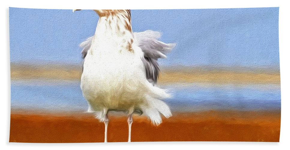 Seagull Hand Towel featuring the photograph Seagull Colors by Alice Gipson