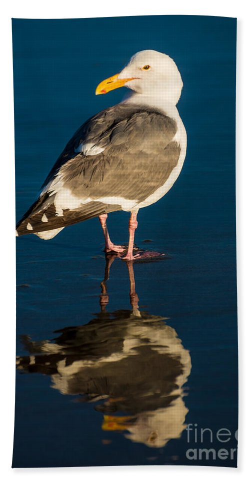 Seagull Bath Sheet featuring the photograph Seagull Harris Beach - Oregon by Gary Whitton