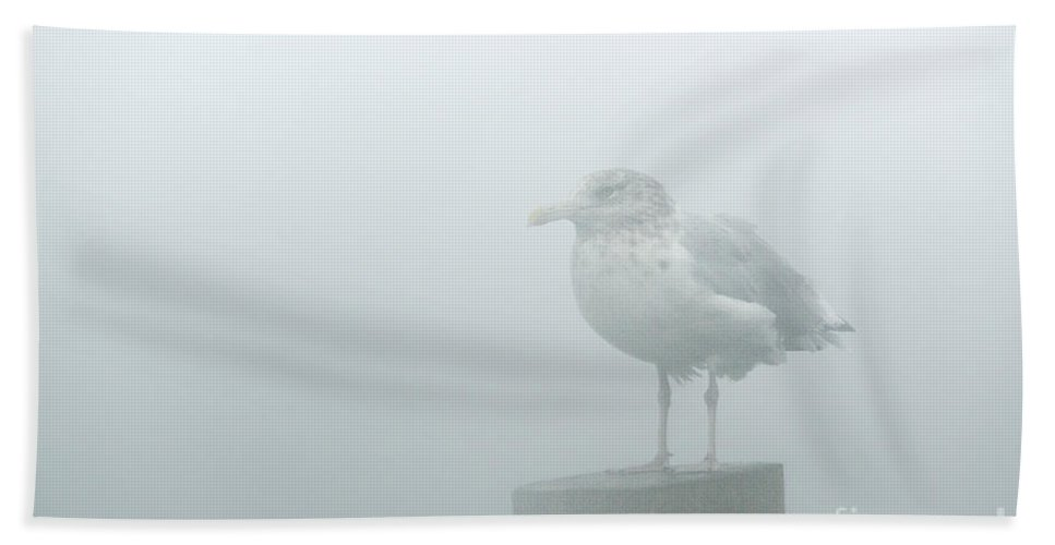 Muted Hand Towel featuring the photograph Seagull Mist by John Greim