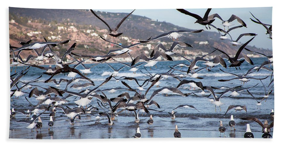 Seagulls Photographs Hand Towel featuring the photograph Seagulls Seagulls And More Seagulls by Jerry Cowart