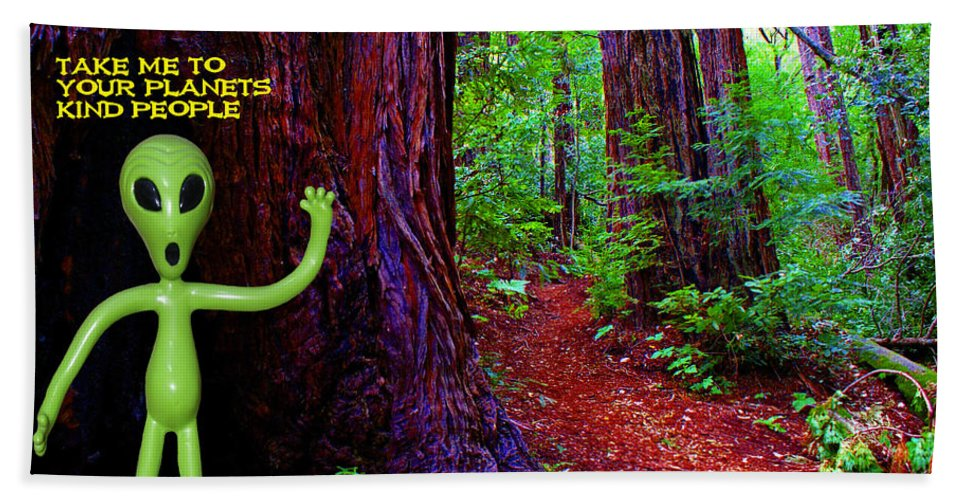 Aliens Hand Towel featuring the photograph Searching For Friends Among The Redwoods by Ben Upham III
