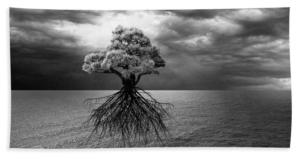 Branches Hand Towel featuring the photograph Searching For Land by Marc Ward