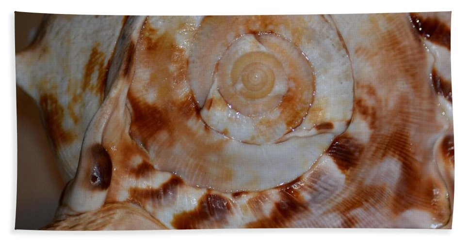 Seashell Abstract 5 Bath Sheet featuring the photograph Seashell Abstract 5 by Maria Urso