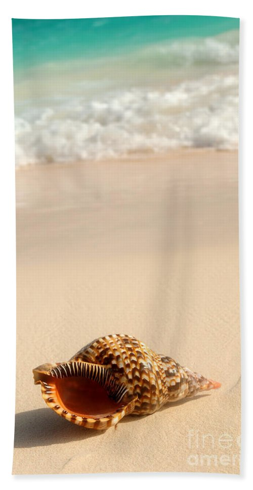 Seashell Hand Towel featuring the photograph Seashell and ocean wave by Elena Elisseeva
