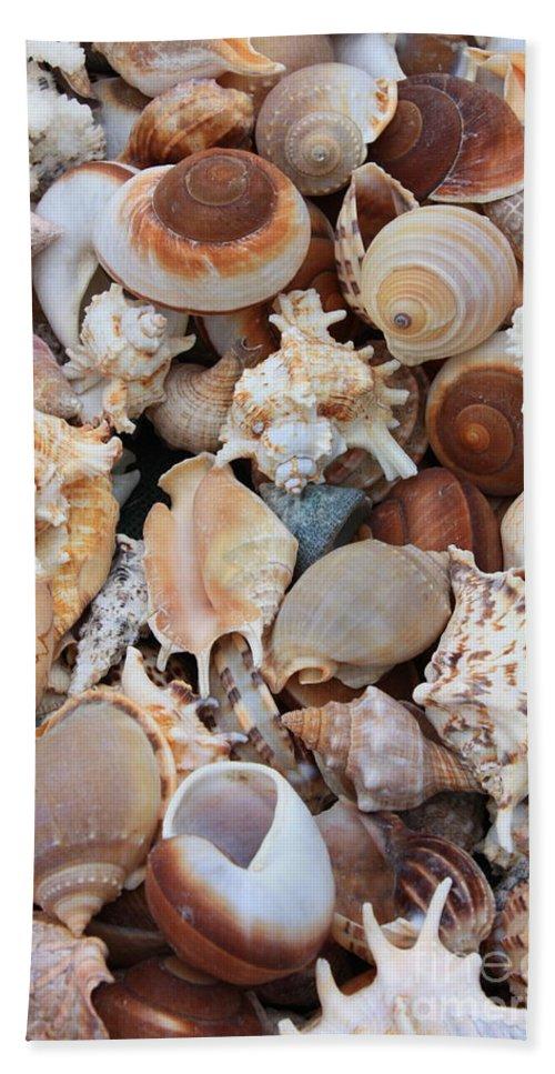 Shell Bath Sheet featuring the photograph Seashells - Vertical by Carol Groenen