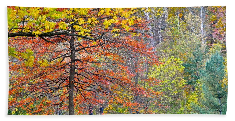Autumn Bath Sheet featuring the photograph Seasonal Sensation by Frozen in Time Fine Art Photography