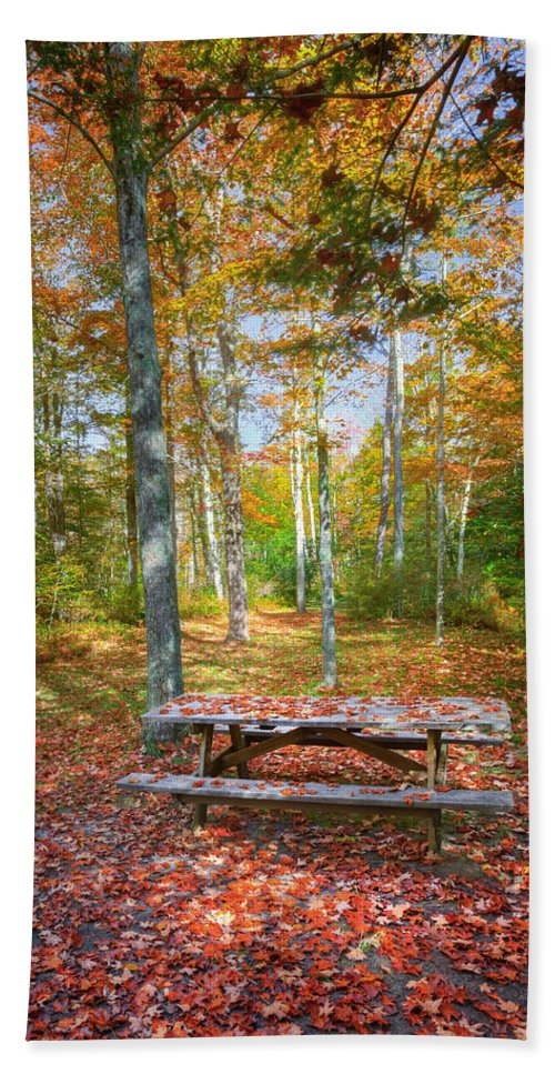 Autumn In New England Bath Sheet featuring the photograph Seasons by Bill Wakeley