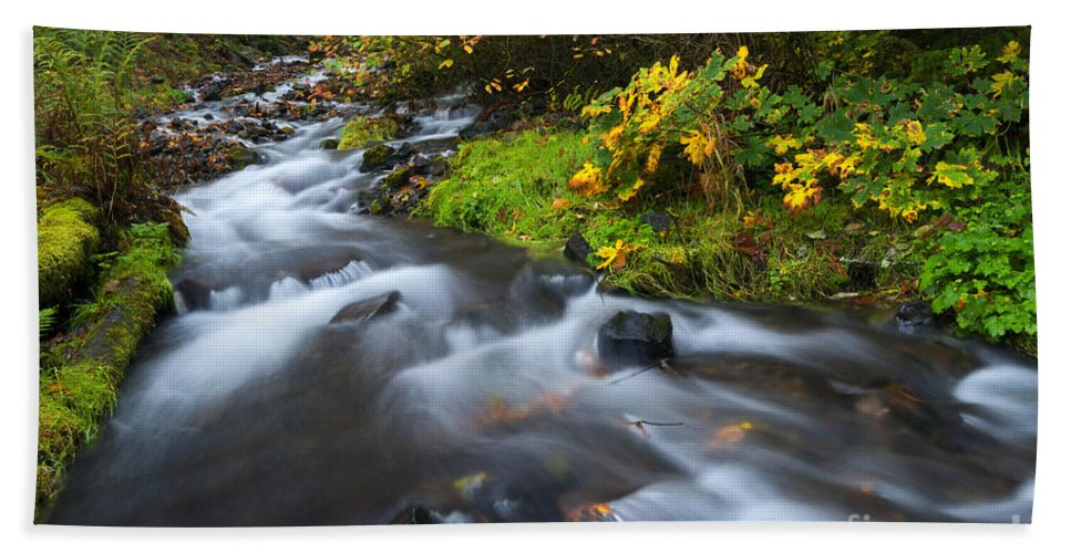 Seasons Bath Sheet featuring the photograph Seasons Change by Mike Dawson