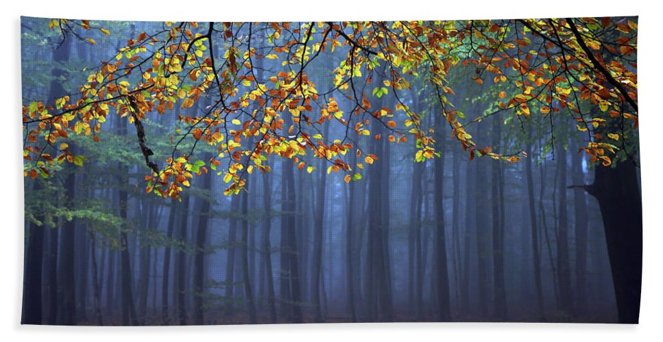Autumn Hand Towel featuring the photograph Seconds Before The Light Went Out by Roeselien Raimond