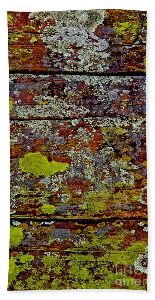 Sedona Carpet Photograph Is Of Lichen Growing On Rocks Hand Towel featuring the photograph Sedona Carpet by Mae Wertz