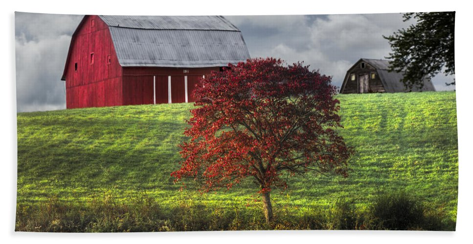 Appalachia Hand Towel featuring the photograph Seeing Red by Debra and Dave Vanderlaan