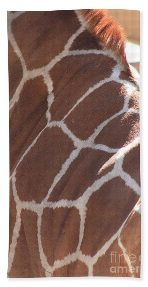 Giraffe Hand Towel featuring the photograph Seeing Spots by Brandi Maher