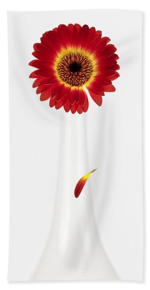 Flower Hand Towel featuring the photograph Separation by Dave Bowman