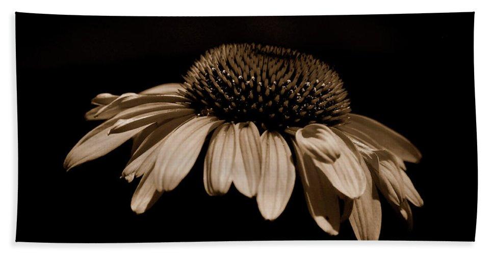 Daisy Hand Towel featuring the photograph Sepia Daisy by Lori Tambakis