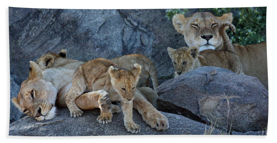 Lion Pride Hand Towel featuring the photograph Serengeti Pride by David Beebe