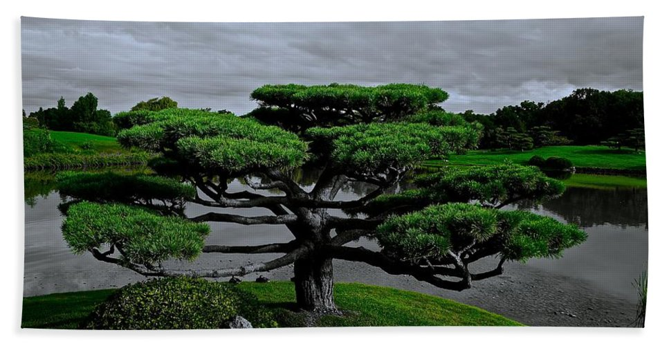 Japanese Garden Hand Towel featuring the photograph Serenity And Balance by Tim G Ross