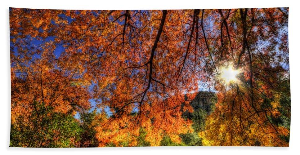 Arizona Bath Sheet featuring the photograph Shades Of Autumn by Saija Lehtonen