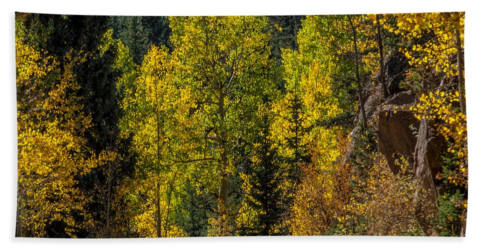 Autumn Hand Towel featuring the photograph Shades Of Fall by Ernie Echols