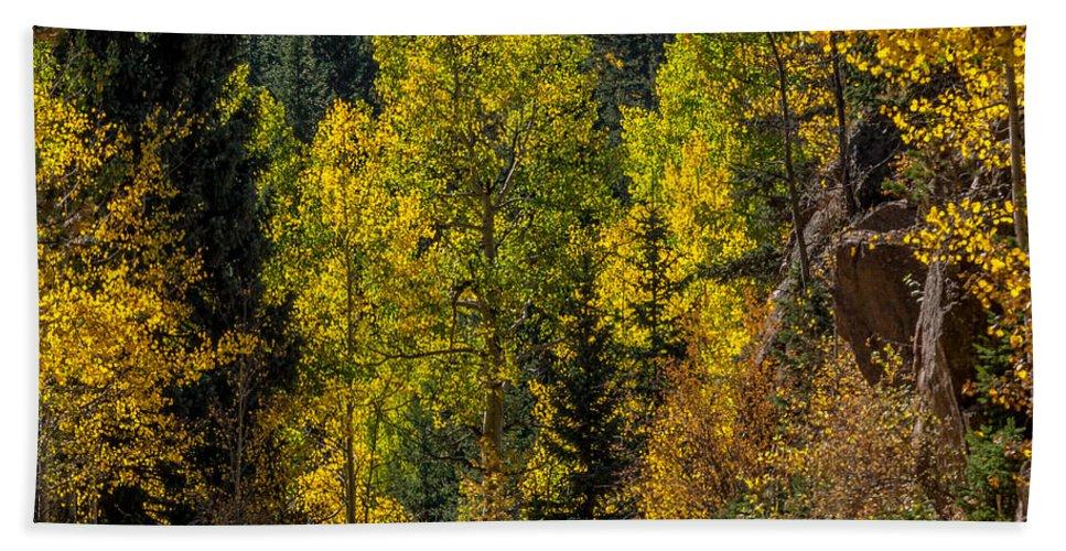 Autumn Bath Sheet featuring the photograph Shades Of Fall by Ernie Echols