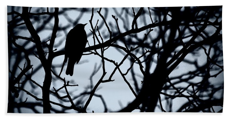 Bird Hand Towel featuring the photograph Shadow Among The Shadows by Kenny Glotfelty