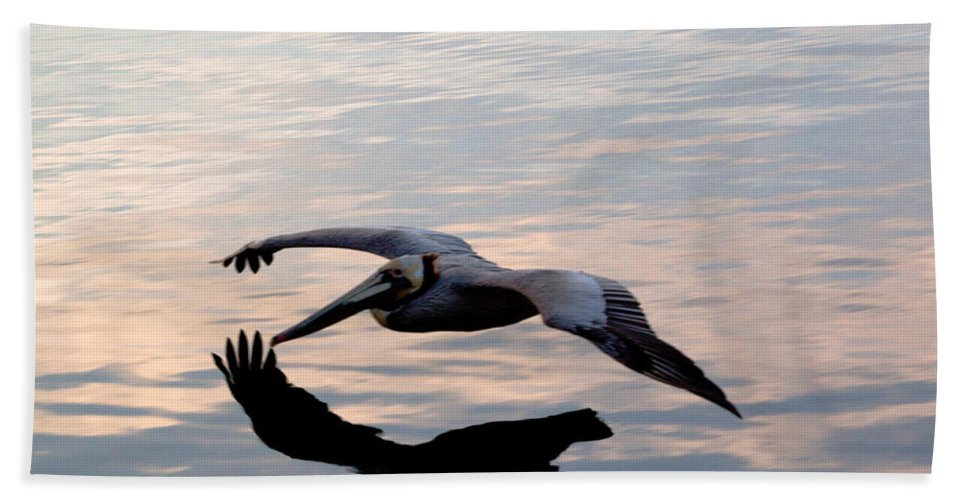 Pelican Bath Sheet featuring the photograph Shadow Skimmer by John Daly