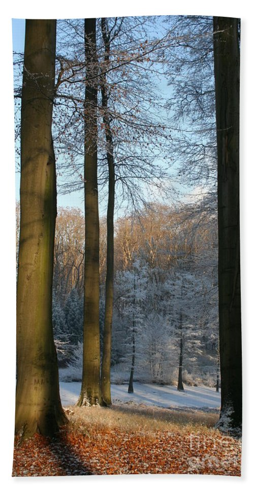 Sunlight Hand Towel featuring the photograph Light And Shadows In Wintertime by Christiane Schulze Art And Photography