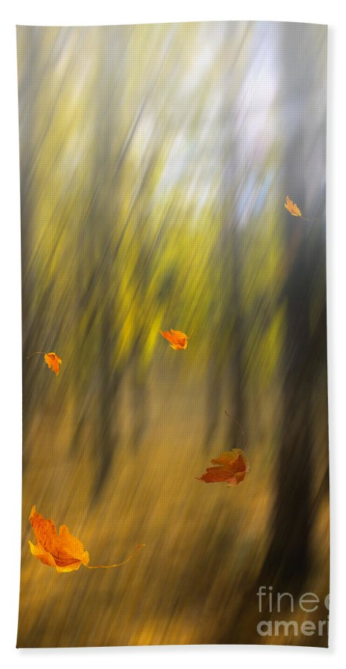 Art Bath Towel featuring the photograph Shed Leaves by Veikko Suikkanen