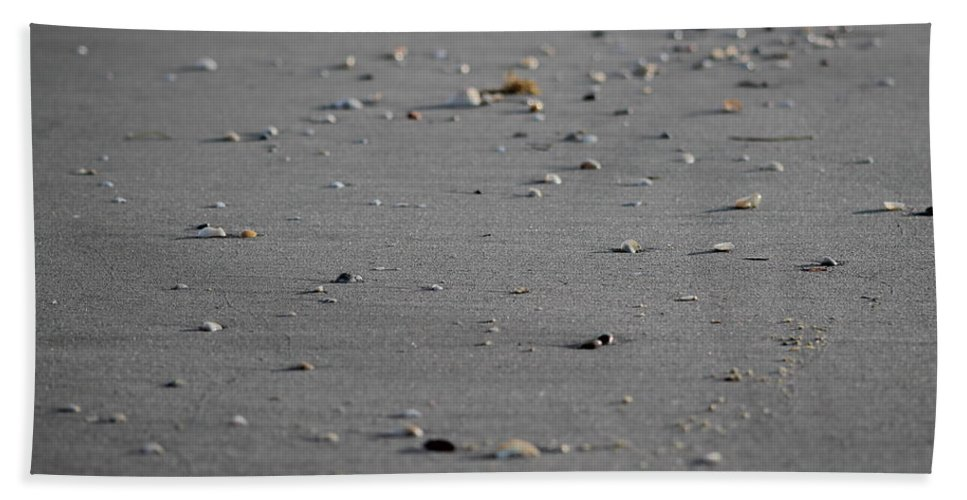 Beach Bath Sheet featuring the photograph Shell Line by Catie Canetti