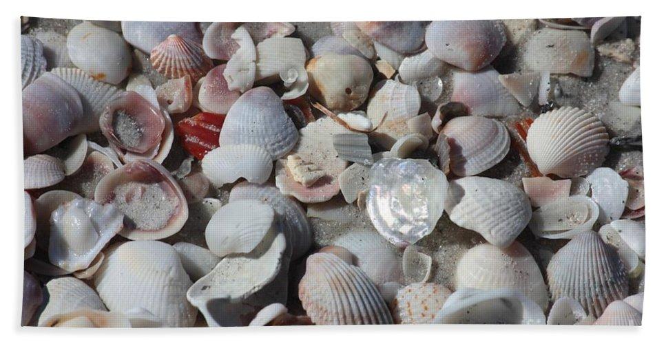 Shells Hand Towel featuring the photograph Shells On Treasure Island by Carol Groenen