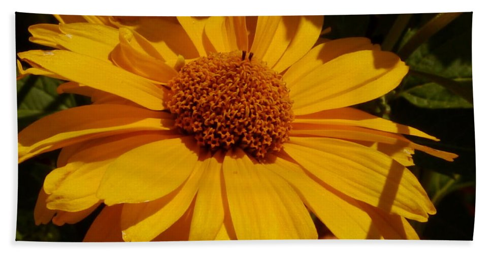 Flower Hand Towel featuring the photograph Shine On Me by Christiane Schulze Art And Photography