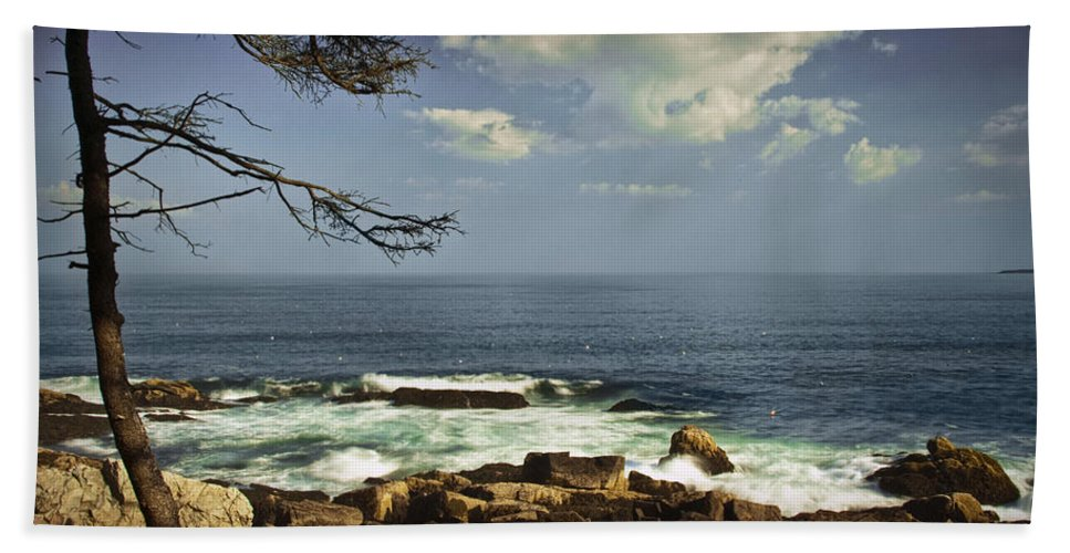 Art Hand Towel featuring the photograph Shoreline View In Acadia National Park by Randall Nyhof