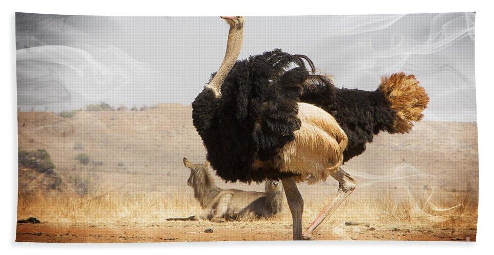 Ostrich Hand Towel featuring the photograph Show-off Modern by Douglas Barnard