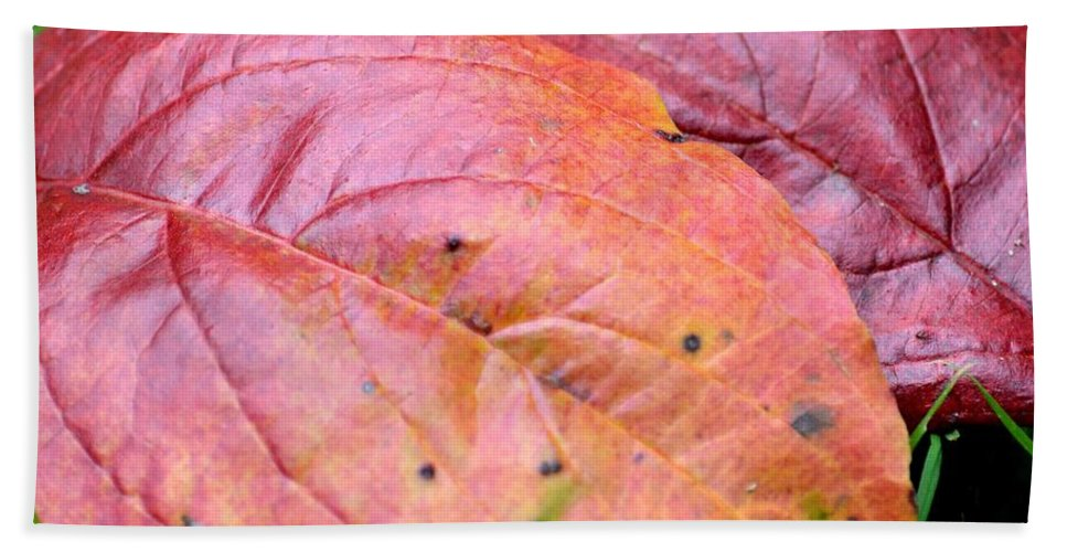 Side By Side They Fall Hand Towel featuring the photograph Side By Side They Fall by Maria Urso