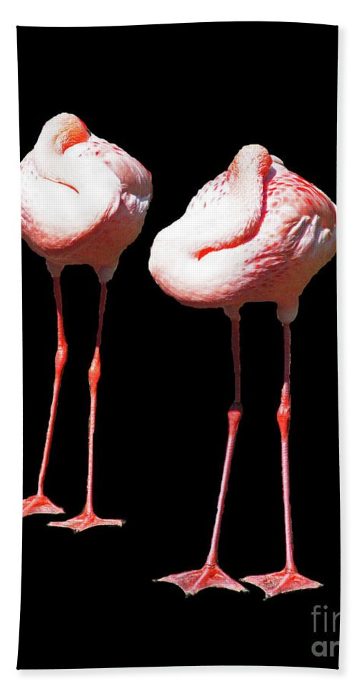 Flamingos Bath Sheet featuring the digital art Siesta In Pink by Lizi Beard-Ward