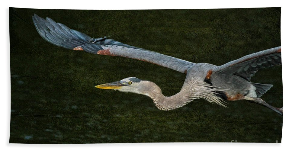 Wildlife Bath Sheet featuring the photograph Silence In The Wings by Deborah Benoit