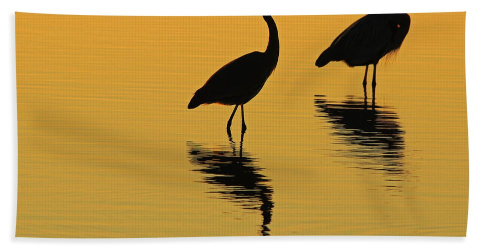 Herons Hand Towel featuring the photograph Silent Sunset by Kris Hiemstra