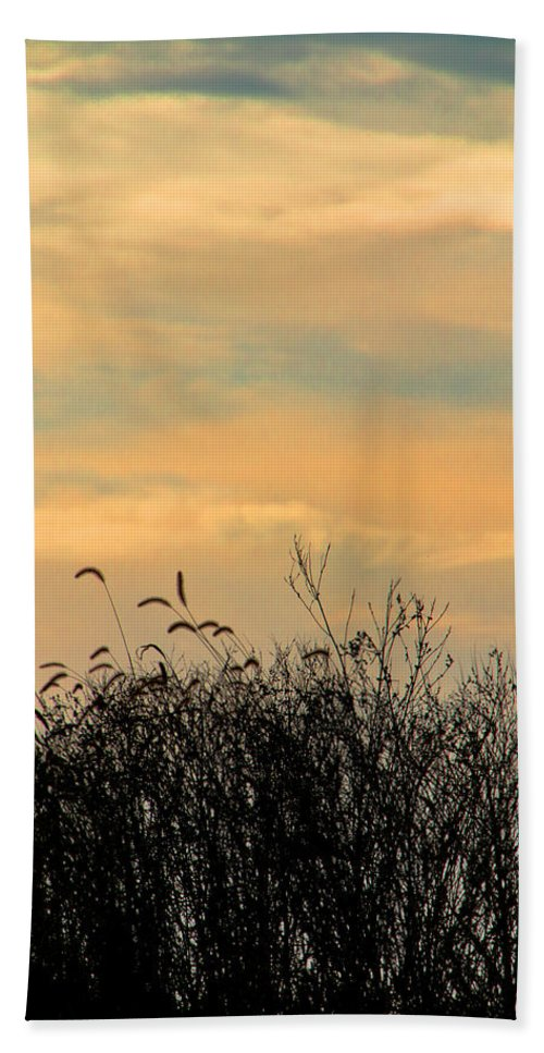 Art Hand Towel featuring the photograph Silhouette Of Grass And Weeds Against The Color Of The Setting Sun by Randall Nyhof